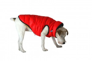 Jacket for Dog Airy Vest - Kurtka dla psa Roz. M-50